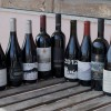 Top Etna Rosso Wines Blind Taste Test