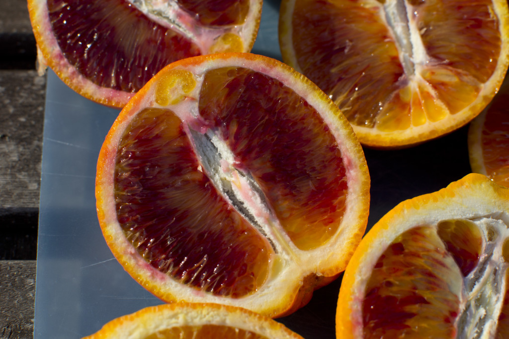 sicilian blood orange 2