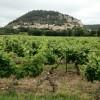 Provence France – Wine Paradise